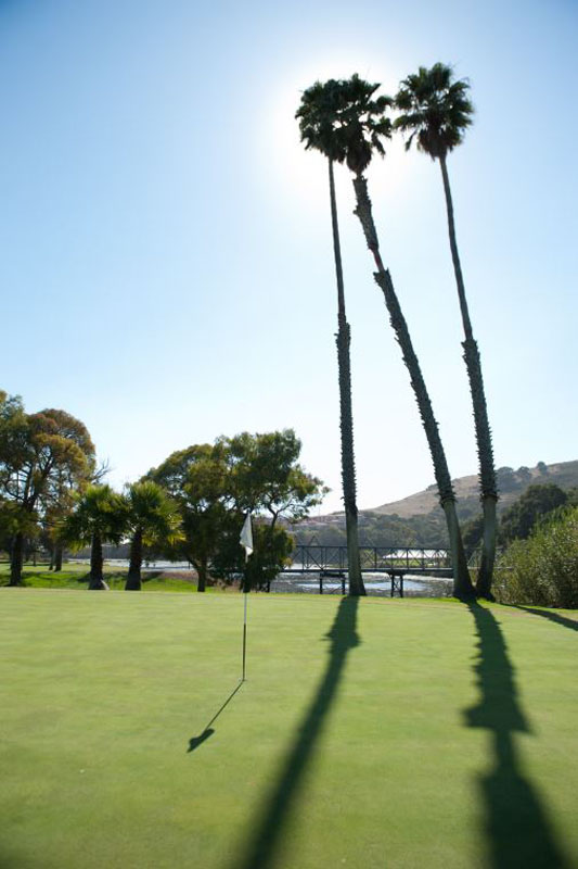 Tall palm trees cast a shadow on the golf course at Avila Beach Golf Resort