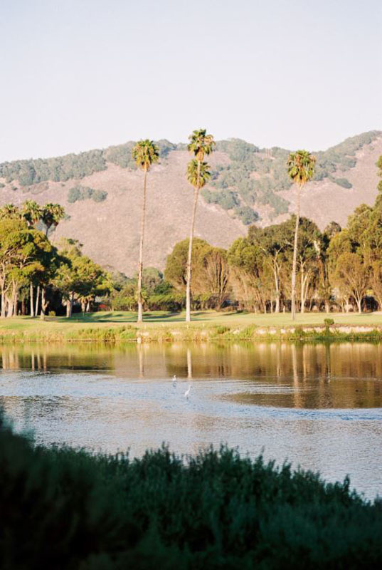 Tall palm trees stand by a pond at the course